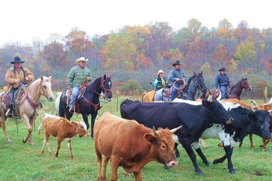 horseback riding vacations east coast